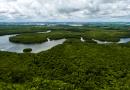 Questão da Amazônia pode afetar agronegócio