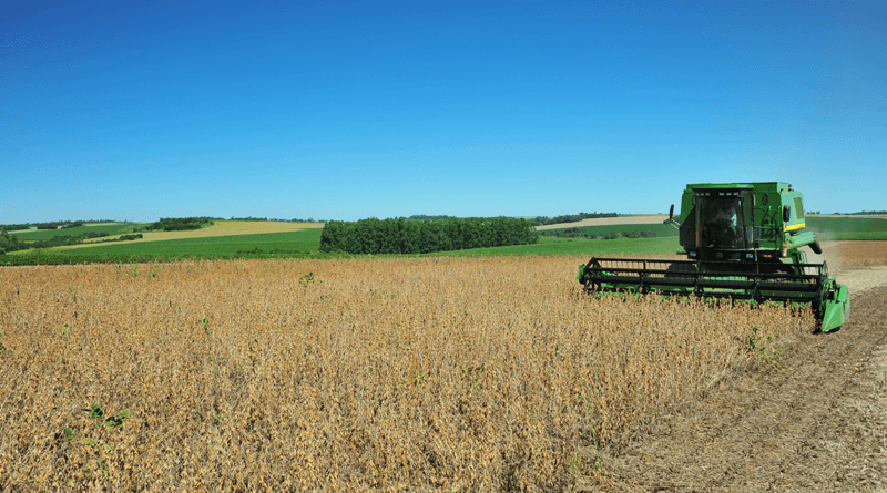 Paraná prevê 23,3 milhões de toneladas na safra de verão 2019/2020
