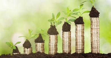 Fundo argentino investe no agronegócio brasileiro