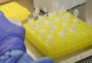 Grandes bancos privados vão importar e doar 5 milhões de testes para coronavírus