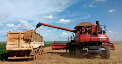 Exportação de soja do Brasil atinge recorde em março com forte demanda da China