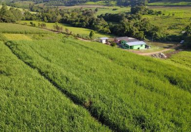 Agricultura inicia novos projetos voltados a pequenos produtores