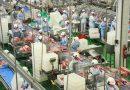Paraná registra produção recorde de carnes em 2020